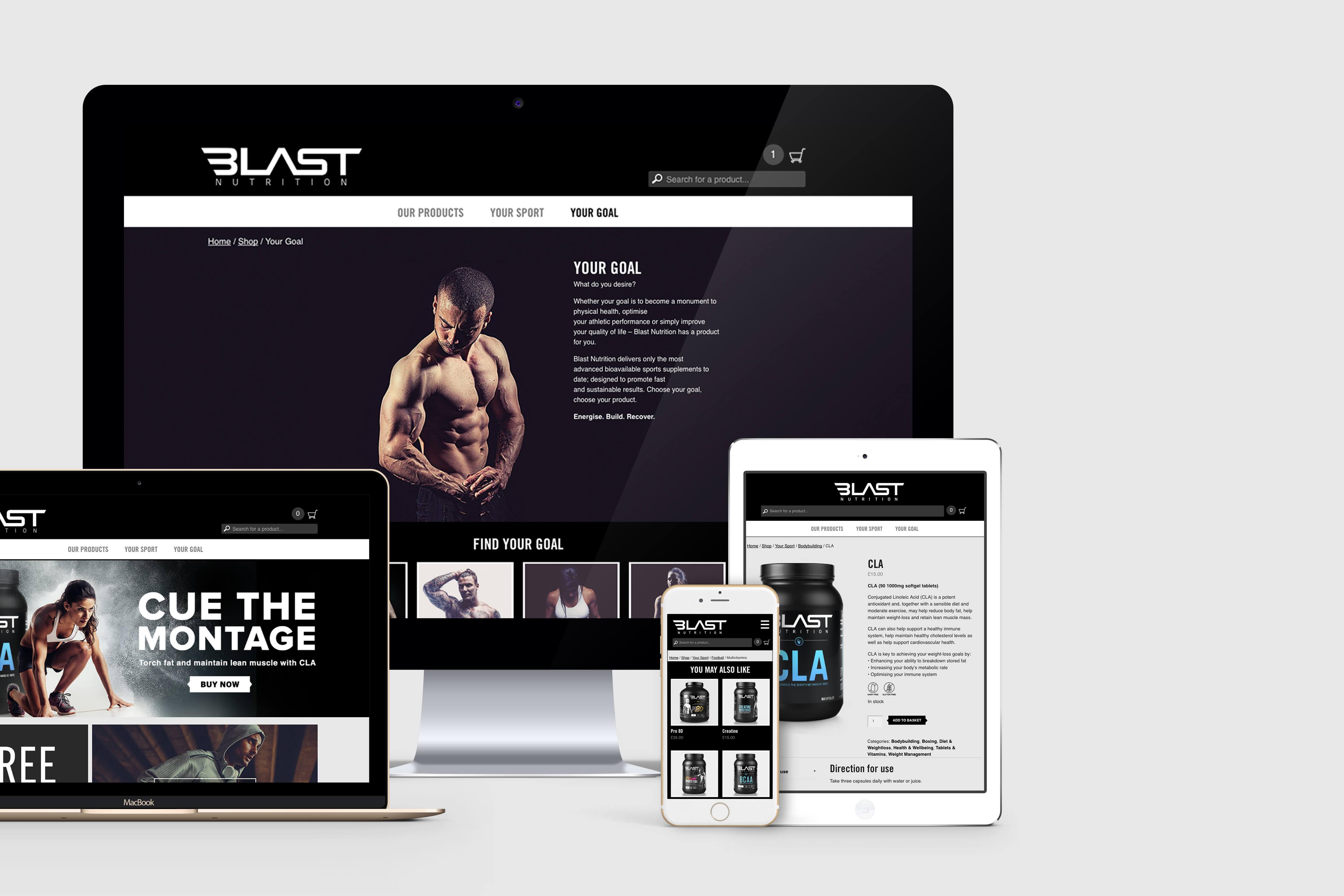 BLAST_web2